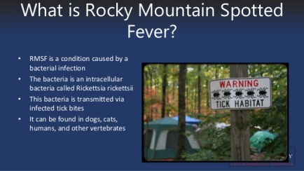 rocky-mountain-spotted-fever-6-638